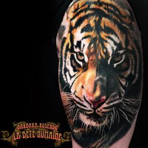 meilleure-tatoueuse-paris-barbara-rosendo-tatouage-tattoo-tigre