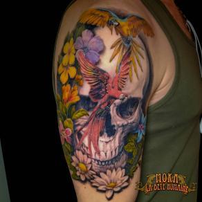 17-moka-tatoueur-paris-realiste-style-realisme-tatouage-tattoo-crane-perroquet