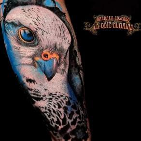 meilleure-tatoueuse-paris-barbara-rosendo-tatouage-tattoo-rapace-bleu