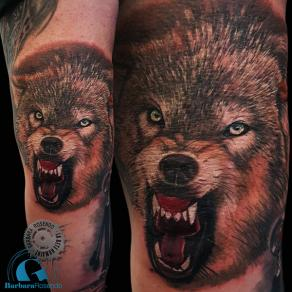 barbara-rosendo-realistic-tattoo-tatouage-realiste-couleur-color-loup-wolf-coude-elbow-animal