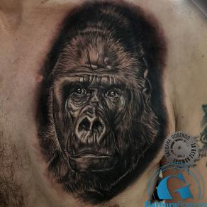 barbara-rosendo-realistic-tattoo-tatouage-realiste-noir-et-gris-black-and-grey-gorille-gorilla-animal