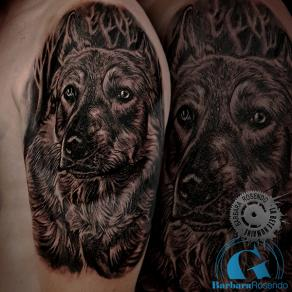 barbara-rosendo-realistic-tattoo-tatouage-realiste-noir-et-gris-black-and-grey-loup-wolf-laura-animal