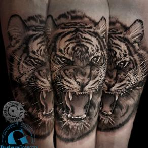 barbara-rosendo-realistic-tattoo-tatouage-realiste-noir-et-gris-black-and-grey-tigre