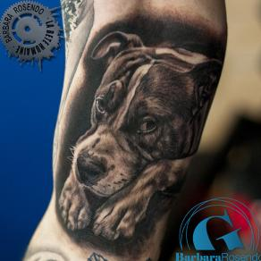 barbara-rosendo-realistic-tattoo-tatouage-realiste-noir-et-gris-black-and-grey-elwood-dog-animal