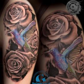 barbara-rosendo-realistic-tattoo-tatouage-realiste-noir-et-gris-black-and-grey-roses-colibri-bird