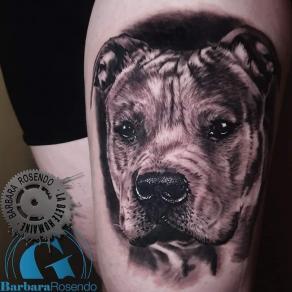 meilleure-tatoueuse-paris-barbara-rosendo-tatouage-chien-realiste-tattoo