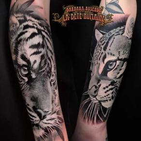 meilleure-tatoueuse-paris-barbara-rosendo-tatouage-tattoo-felin