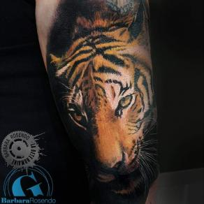 meilleure-tatoueuse-paris-barbara-rosendo-tatouage-tigre-realiste-tattoo
